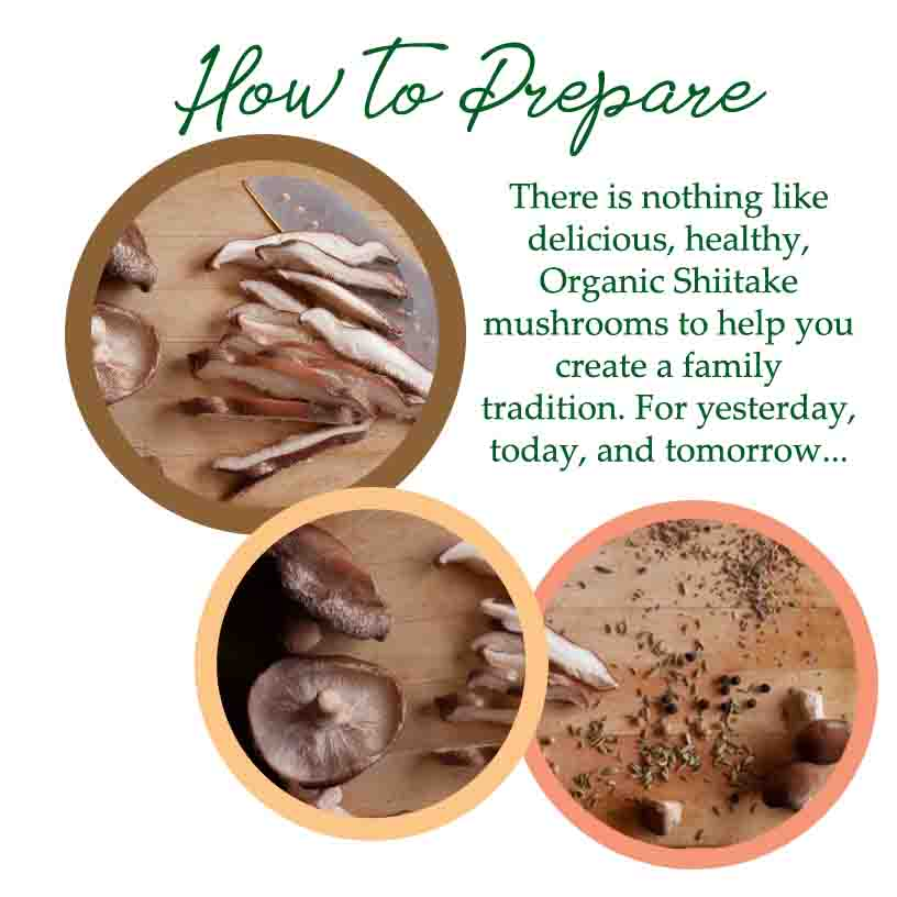 how to prepare shiitake mushrooms recipes certified organic shiitake mushrooms oregon food safety vegan