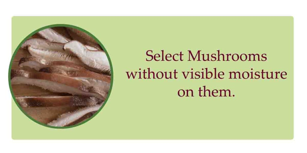 selecting shiitake mushrooms